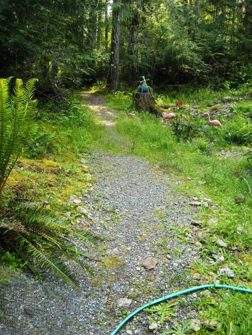 06-13 path