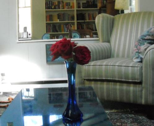 clancy roses
