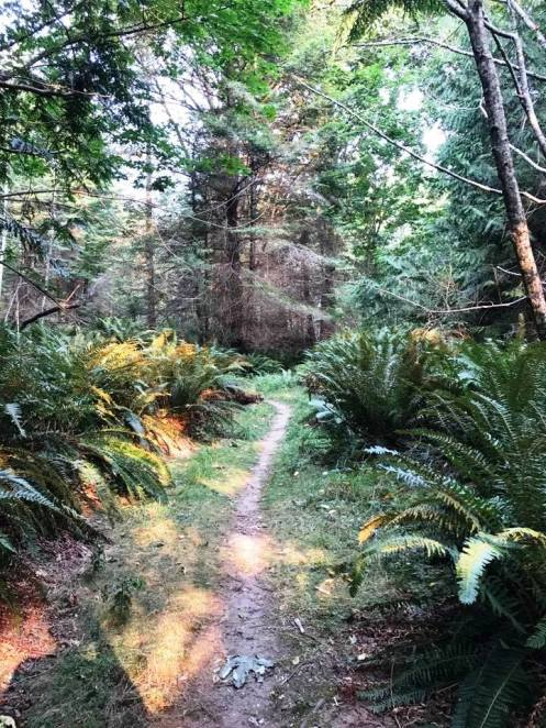 03 trail