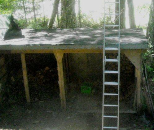 05-27 woodshed