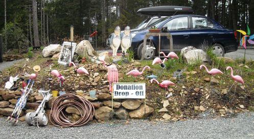 04-03 flamingos