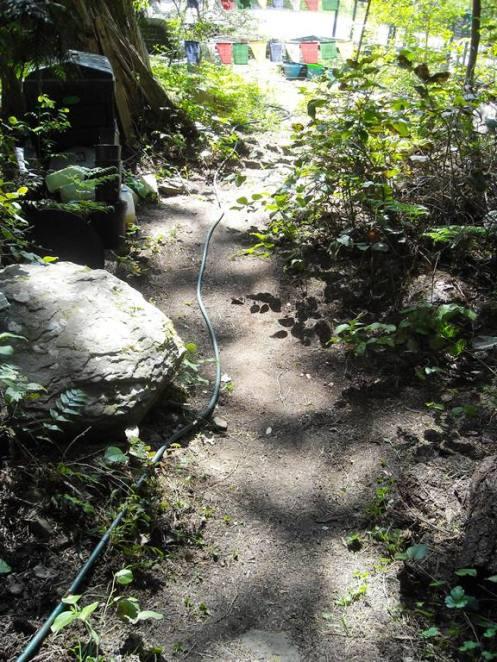 05-08 path